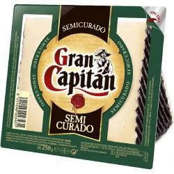 QUESO GRAN CAPITAN SEMI CUÑA 250GR